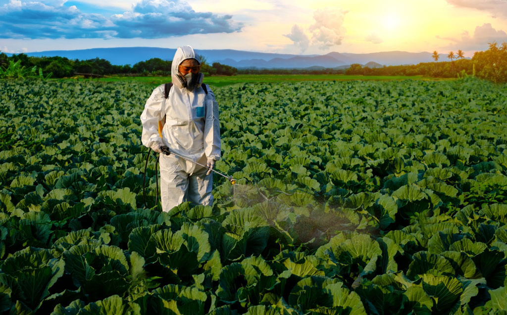 a person spraying pesticides on the crop | Agrrro