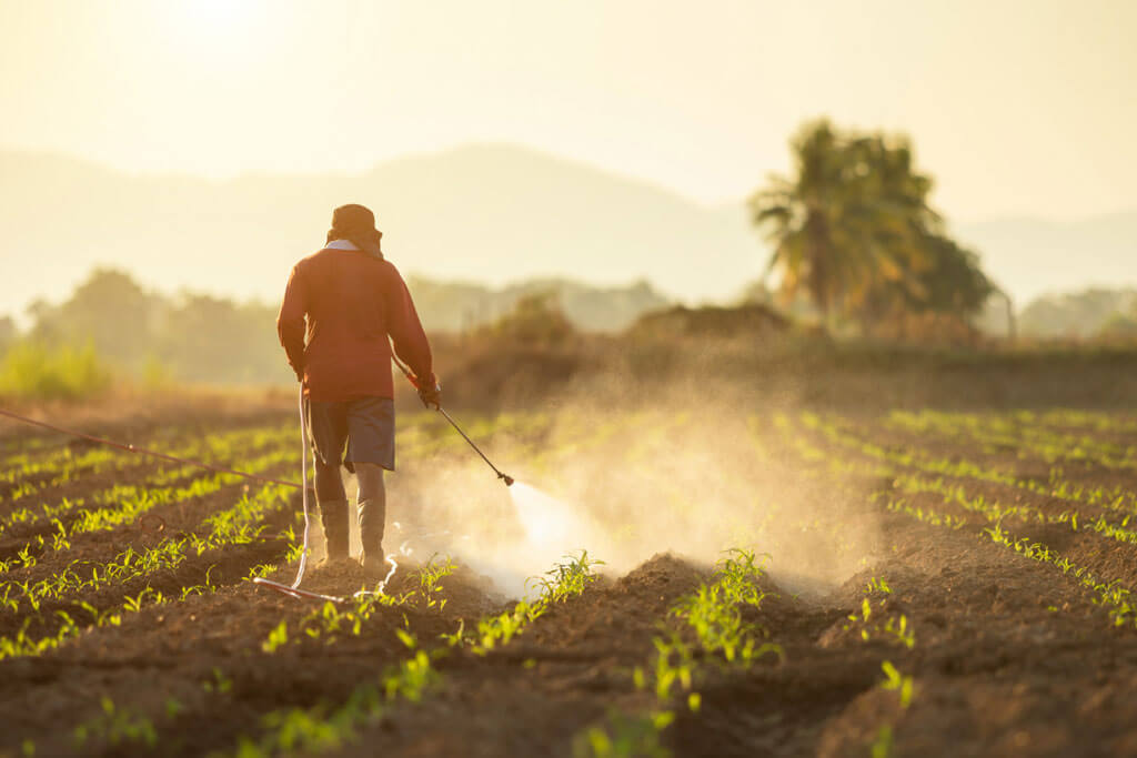 image showing a farmer sprayin pesticides on the crops making it inorganic | Agrrro